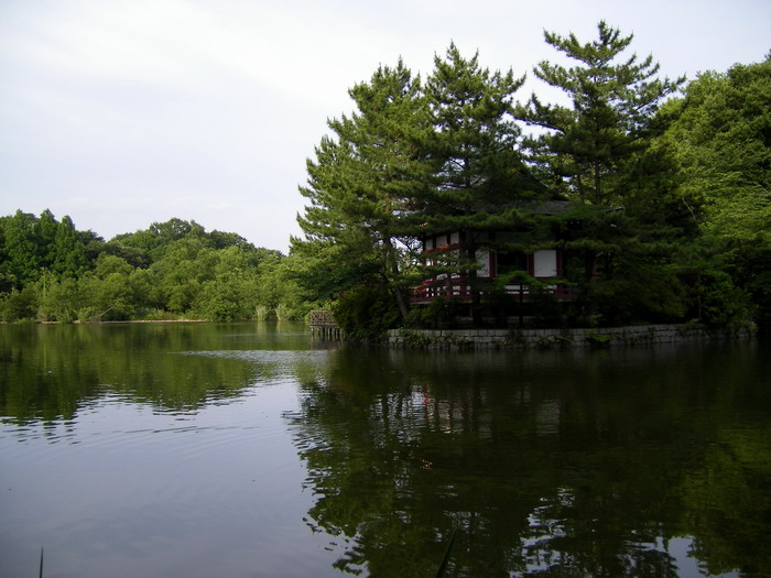 石神井公園2
