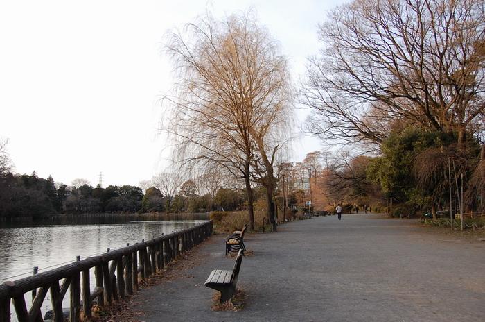 上池遊歩道3