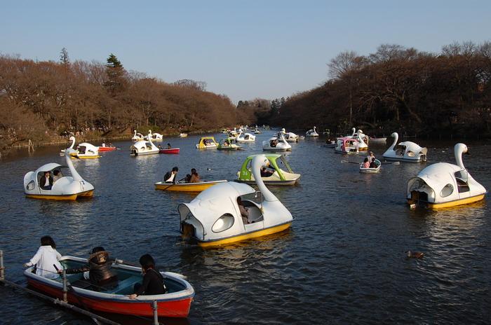 ボート大渋滞