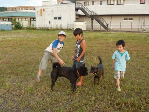 007_20101009131134.jpg