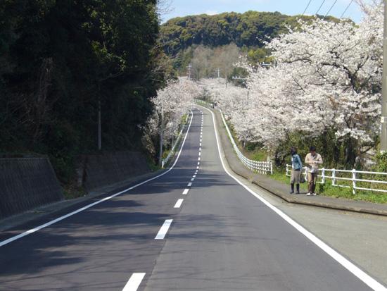 桜坂トンネル