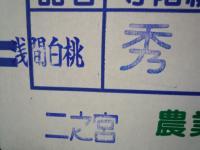 山梨産「浅間白桃」