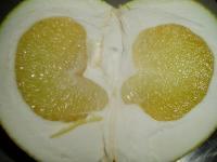 「晩白柚」の断面