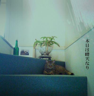 02_20100717224631.jpg