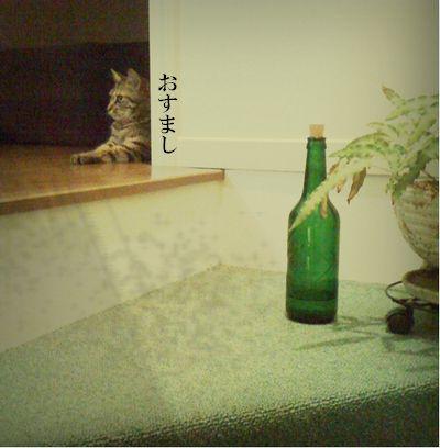 03_20100709232517.jpg