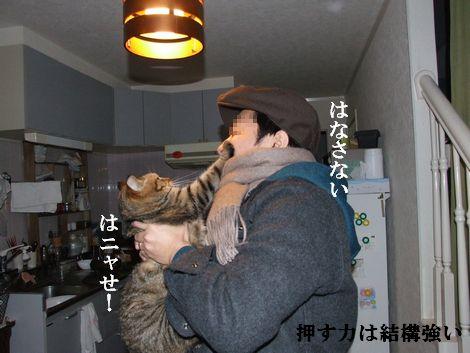 12_20100302202217.jpg