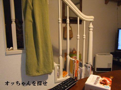 21_20100310155902.jpg