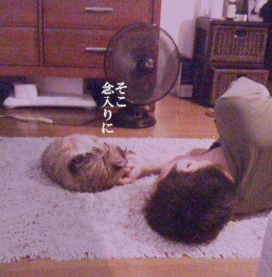 2_20100711230006.jpg