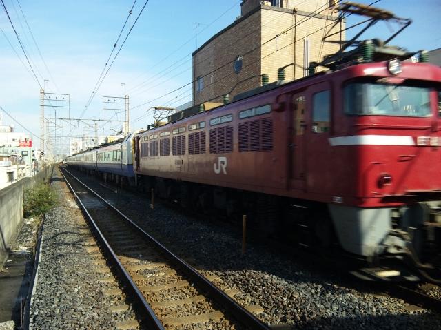 SH380057.jpg