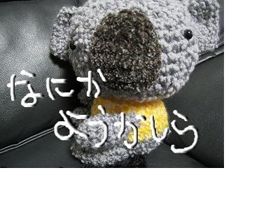 snap_naochan705_20112417381.jpg