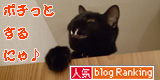 koko_banner4.jpg