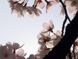 200904012_5.jpg