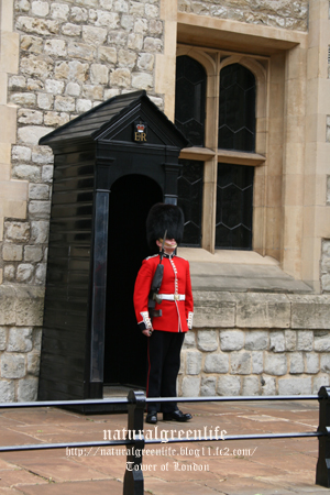 Tower of London6