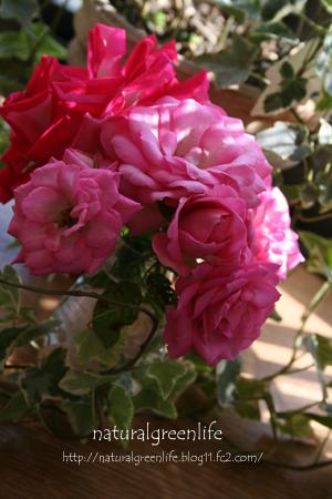 頂いた薔薇で・・・