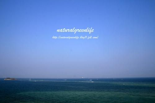富津岬の海