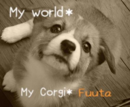 fuuta11.jpg