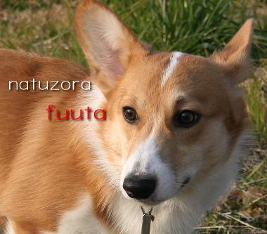 fuuta25.jpg