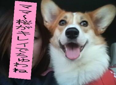 konayuki.jpg