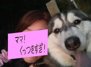momoyuki2.jpg