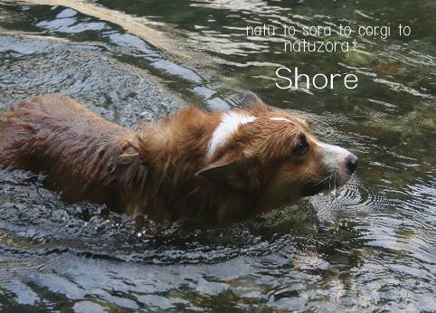 shore08863.jpg