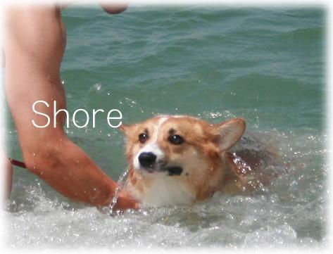 shore615.jpg