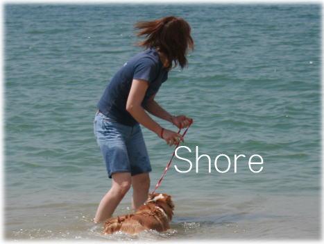 shoreyuki611.jpg