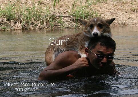 surfroy08861.jpg