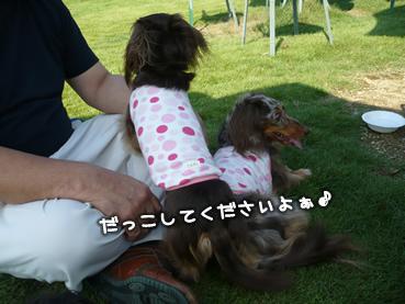 family_odekake-28.jpg