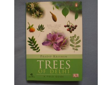 book07-delhitrees.jpg