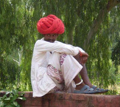 camelwala07_20071218201932.jpg