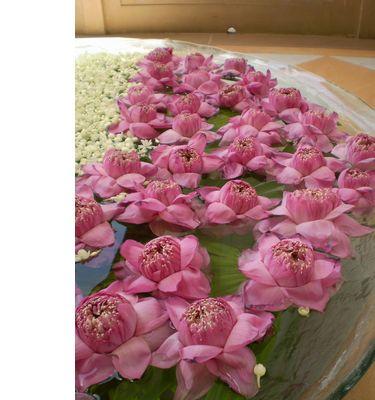 lux-flower.jpg