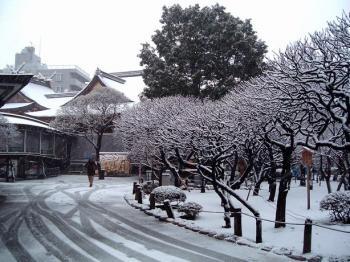 湯島天神 雪