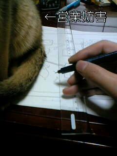 05-11-14_09-11.jpg