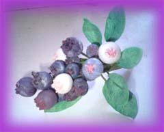 手作りブルーベリー