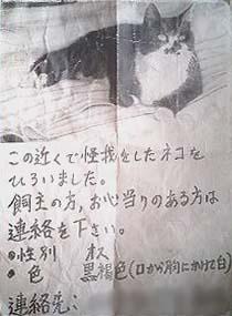 シマ 張り紙
