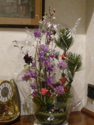 2009花