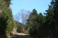観音岳への登山道