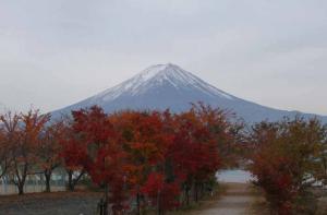 ボート乗り場からの富士山