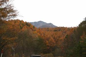 八ヶ岳高原ラインⅣ