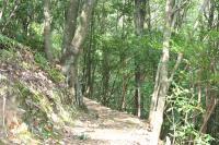 笠木渓谷8
