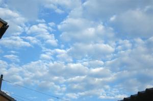 今日も良い天気♪