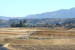 農村景観日本一地区1