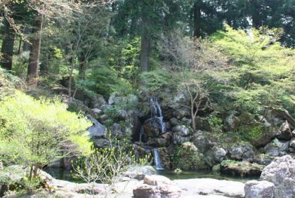 波瀬植物園6