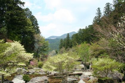 波瀬植物園7