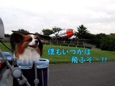200810154.jpg