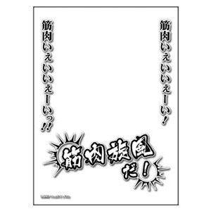 amiami_cgd-8348.jpg