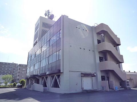 damsai001.jpg