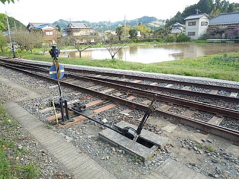 kazusakameyamaa2.jpg