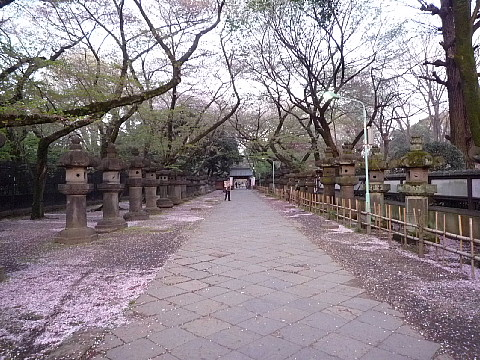 uenobura1.jpg