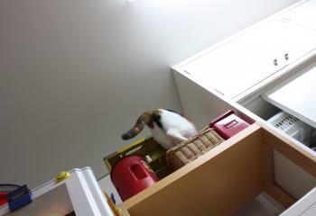 モネ冷蔵庫 2